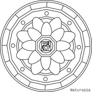 mandala-with-muladhara-symbol
