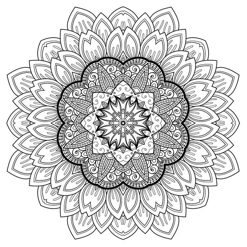 цветочная мандала раскраски антистрес много эскизов и шаблонов