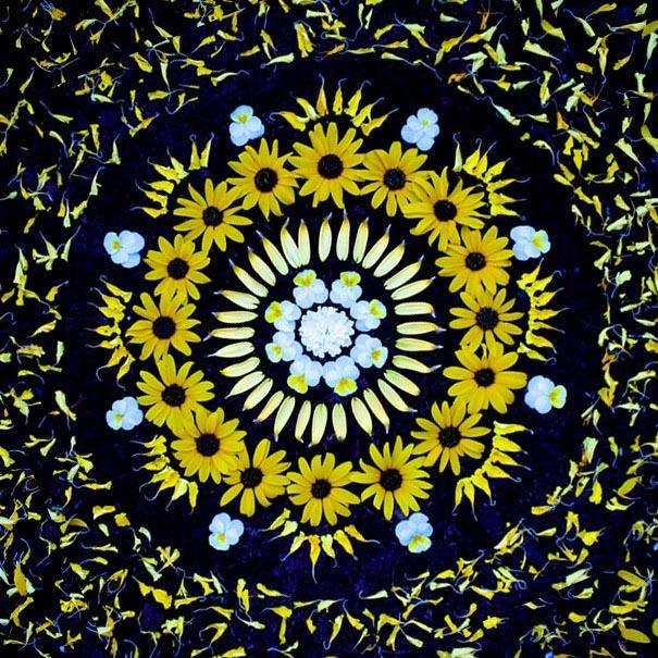 danmala-flower-mandala-kathy-klein-6