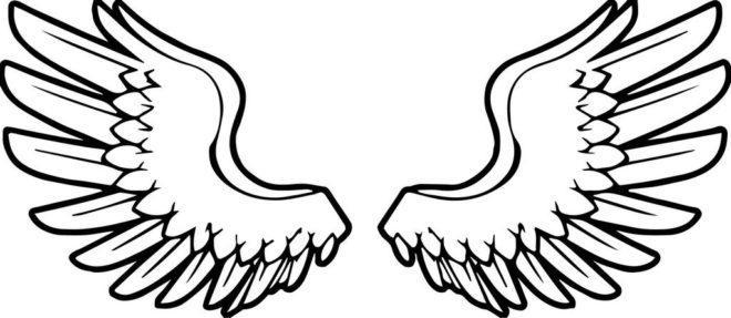 Раскраски перо и крылья: раскрашиваем и обретаем легкость