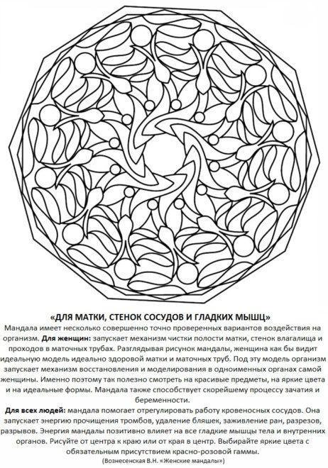 mandala_dlya_matki_stenok_sosudov_i_gladkih_myishc