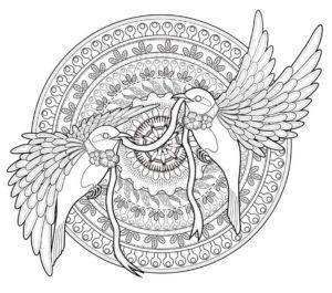 raskraski-mandala-zhivotnie-pticy