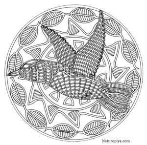 raskraski-mandala-zhivotnie-ptica