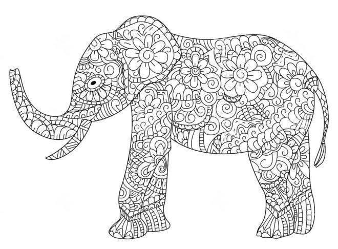 raskraska-slon