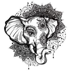 antistress-raskraski-zhivotnye-slon