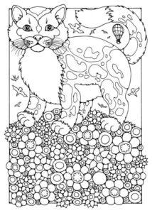 raskraski-koshki-koty-antistress-raspechatat-cat-09