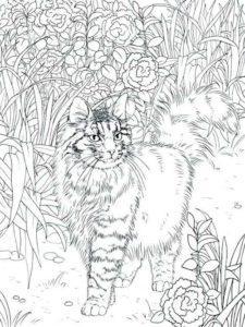 Кототерапия: антистресс раскраски кошки и коты скачать, распечатать