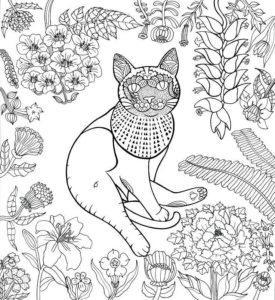 raskraski-koshki-koty-antistress-raspechatat-cat-29