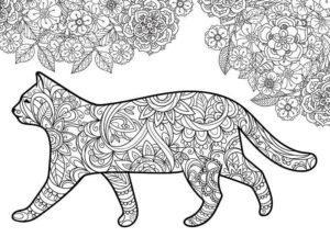 raskraski-koshki-koty-antistress-raspechatat-cat-36