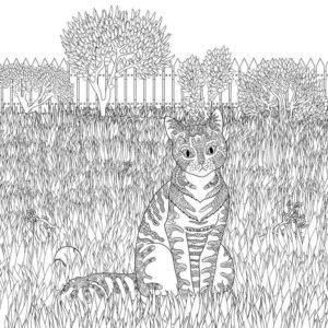 raskraski-koshki-koty-antistress-raspechatat-cat-43