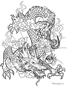 ss-raskraska-drakon-raspechatat-zentangle-coloring-page-dragon-