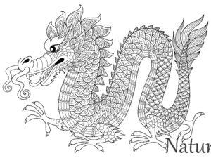antistress-raskraska-drakon-raspechatat-zentangle-coloring-page-dragon-21