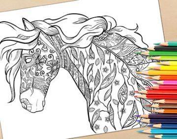 красивые антистресс раскраски лошадь распечатать