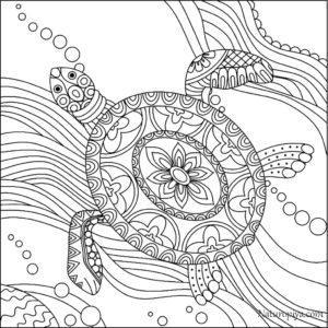 zentangle-raskraski-cherepakhi-raspechatat-8