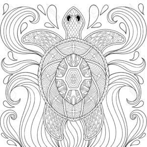 zentangle-turtle-raskraska-antistress-cherepaha-2