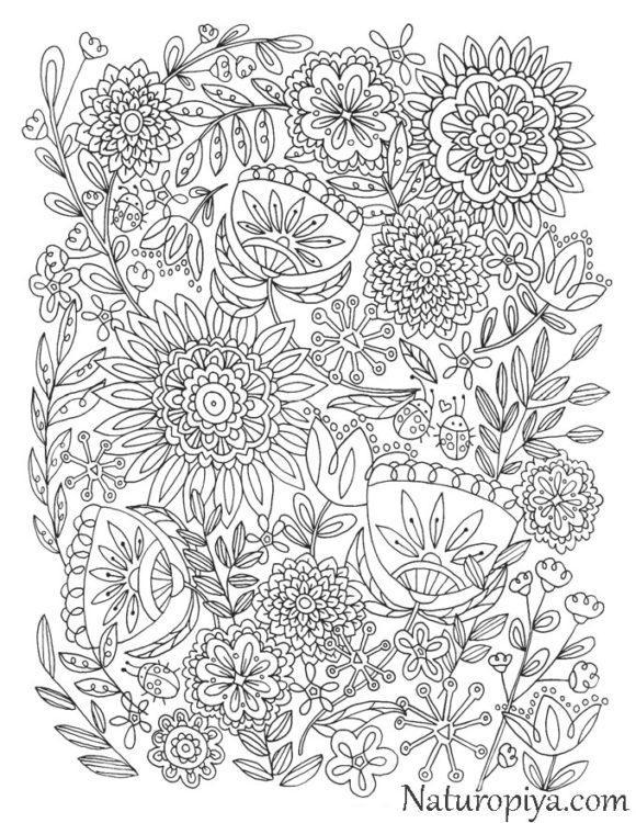 antistress-raskraska-cvety-uzory-raspechatat-coloring-zen-flowers-20
