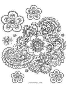 raskraska-antistress-cvet-coloring-zen-flowers