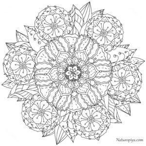 antistress-kartinka-mandala-cvety