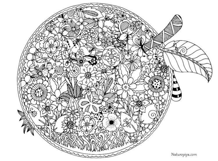 raskraski-cvety-v kruge
