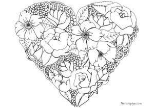 serdce-iz-cvetov