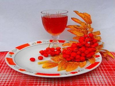 Рябина красная: полезные свойства и рецепты сохранения на зиму