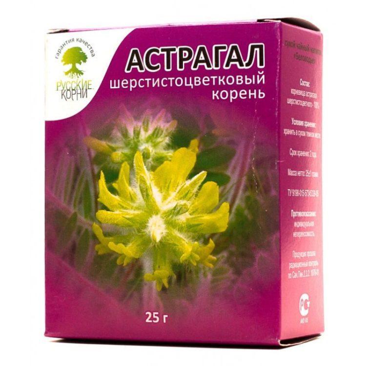 Астрагал — трава долгожителей: лечебные свойства и противопоказания