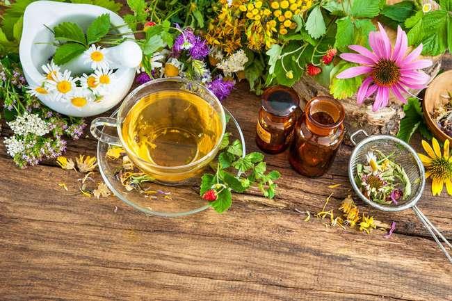 chto-takoe-naturopatiya-travy