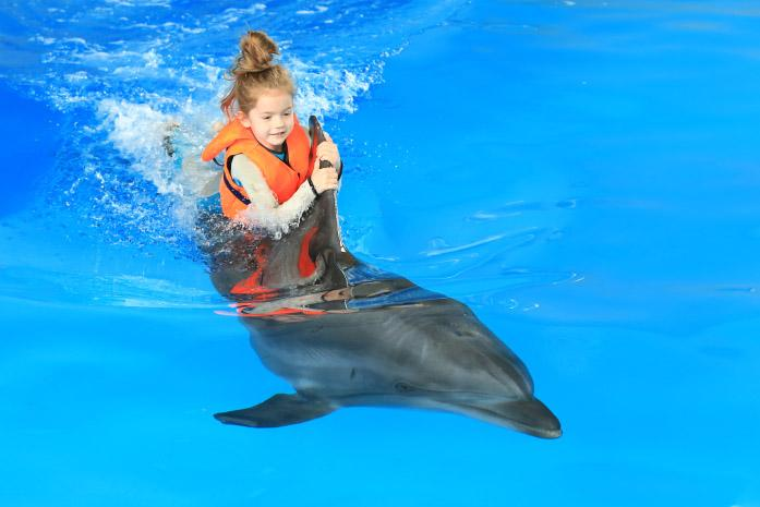 delfinoterapiya-devochka-kataetsya-na-delfine