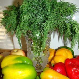 hranenie-svezhei-zeleni