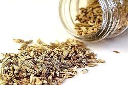 semena-petrushki