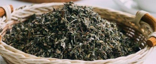 suhoi-ivan-chai