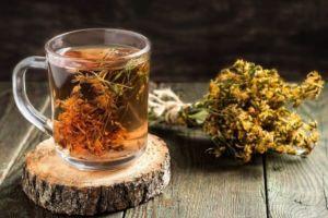 Лечение золотым усом – настойка на водке, применение и отзывы. Как домашний цветок перекочевал в домашнюю аптечку?
