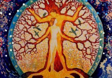 drevo-roda-semi